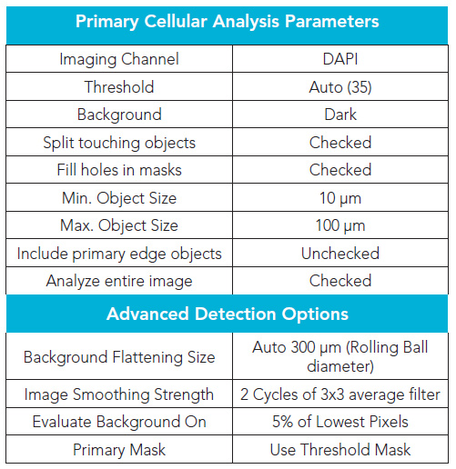 Primary mask nuclei analysis parameters.