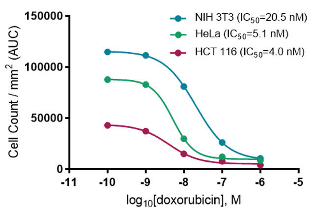 Measuring dose-dependent inhibition of cell proliferation by doxorubicin.