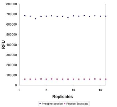 Statistical plot comparing phosphopeptide control to peptide substrate.