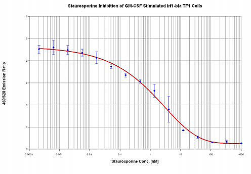 Staurosporine inhibition of beta-lactamase expression in irf1-bla TF1 cells cultured in 96-well microplates.
