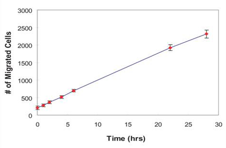 Kinetics of HT1080 cell migration demonstrated by with the Oris™ Cell Migration Assay.