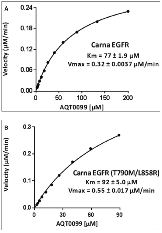 Data was fit with the Michaelis-Menten equation to determine the Km and Vmax for the EGFR and EGFR