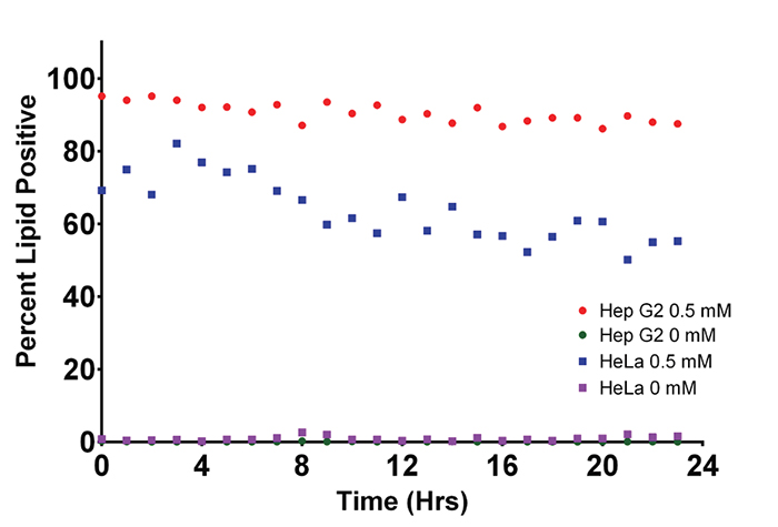 Comparison of lipid Depletion of Hep G2 and HeLa cell lines.
