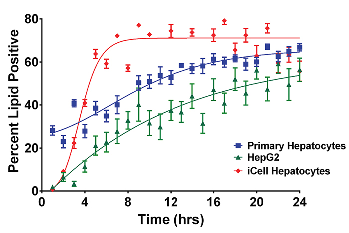 Comparison of lipid formation from different hepatic cell lines