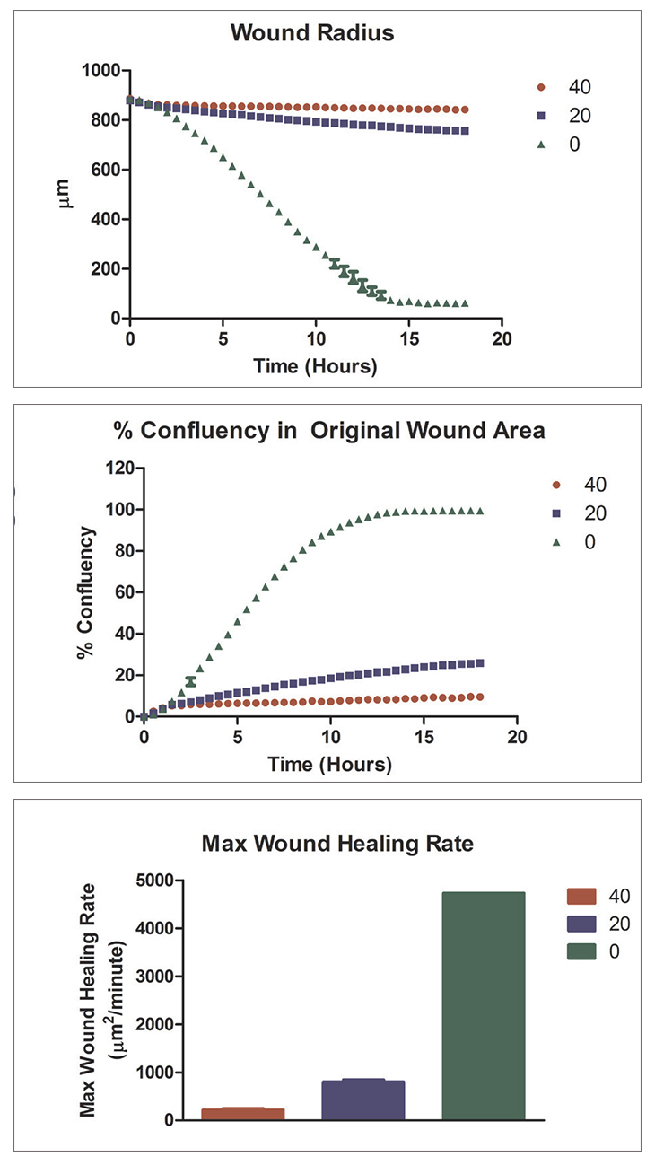 Calculated kinetic 3D wound healing graphs