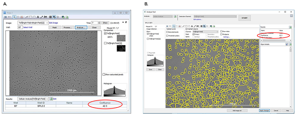 Screen shots demonstrating percent confluence metric displayed in the (A) Plate window and (B) Analyze Tool.