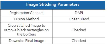 Image Stitching Parameters.
