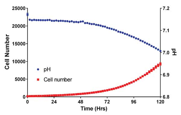 Change in HCT116 Cell Count and pH over time in nonconfluent cultures