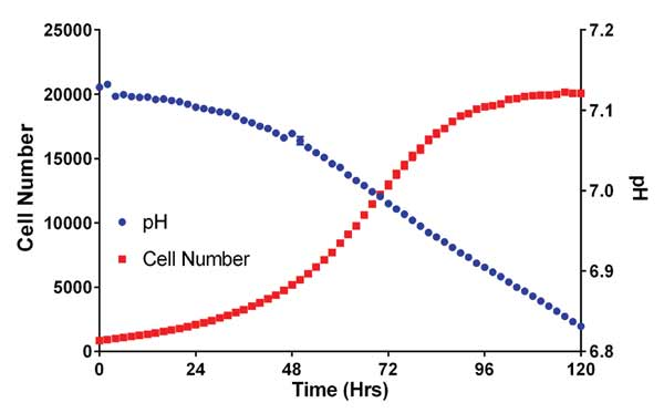 Change in HCT116 Cell Count and pH over time in confluent cultures