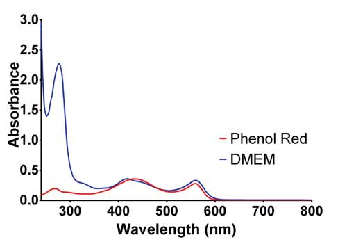 Comparison of phenol red and compete DMEM media absorbance spectra