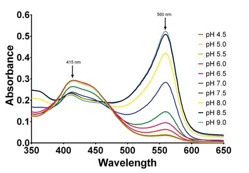 Absorbance Spectra of complete DMEM culture media at different pH levels