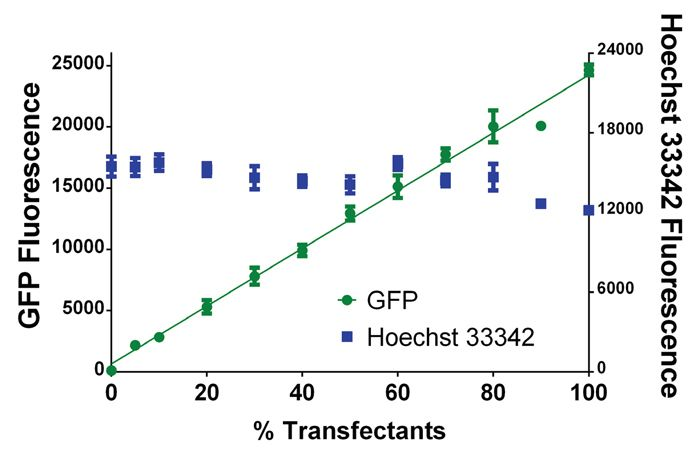 Comparison of GFP and Hoechst 33342 fluorescence in HEK293 cells.