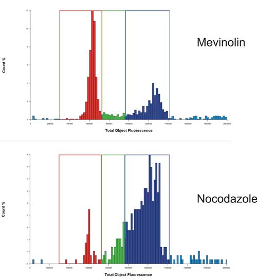 Histogram analysis of nuclear staining from Mevinolin and Nocodazole treated PC-3 cells.