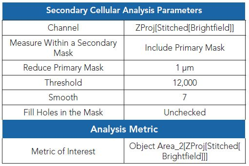 Secondary mask analysis parameters.