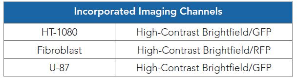 Table 3. Included imaging channels per test cell model.