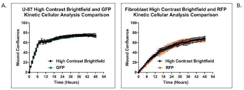 Average kinetic U-87 and fibroblast wound confluence graphs.