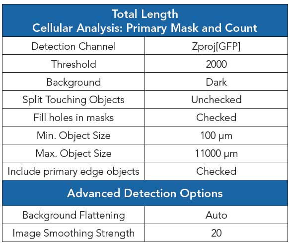 Gen5 image analysis software settings for total length