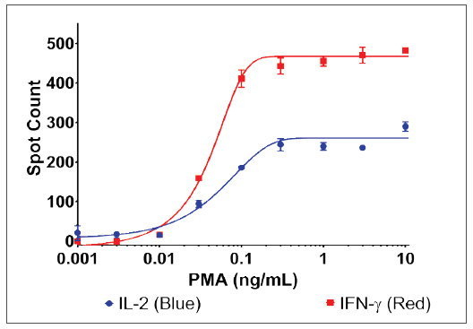 Comparison of IL-2 and IFN-γ secretion by PBMCs after stimulation with PMA.