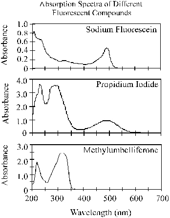 The absorption spectra from 200 nm to 700 nm for sodium fluorescein, propidium iodide, and methylumbelliferone