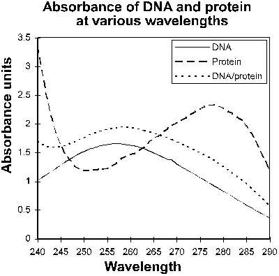 Nucleic Acid Purity Assessment Using A260/A280 Ratios