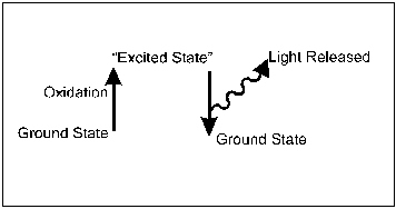 Schematic diagram depicting the generation of light from luminescent molecules in the excited stat