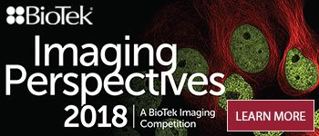Imaging perspectives