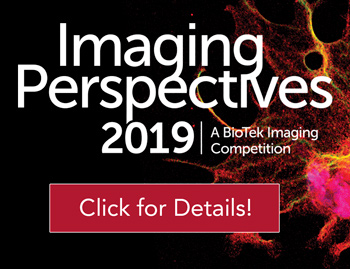 Imaging Competition 2019