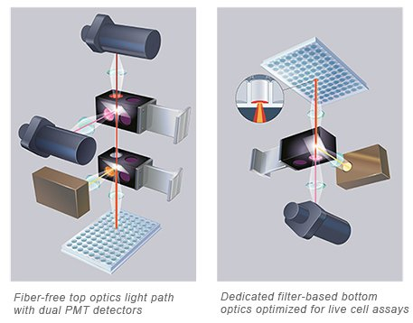 Fiber-free top optics light path with dual PMT detectors