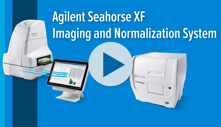 Agilent Seahorse XF Imaging Normalization System