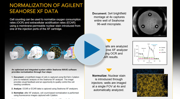 Normalization of Agilent Seahorse XF Data