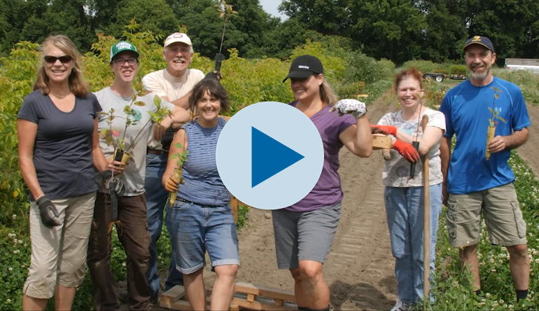 Intervale Volunteering
