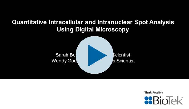 Webinar: Quantitative Intracellular and Intranuclear Spot Analysis Using Digital Microscopy