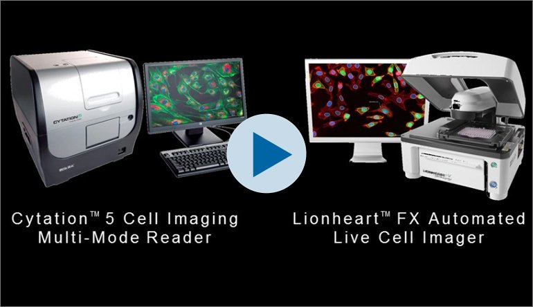 Enabling Quantitative Cellular Imaging